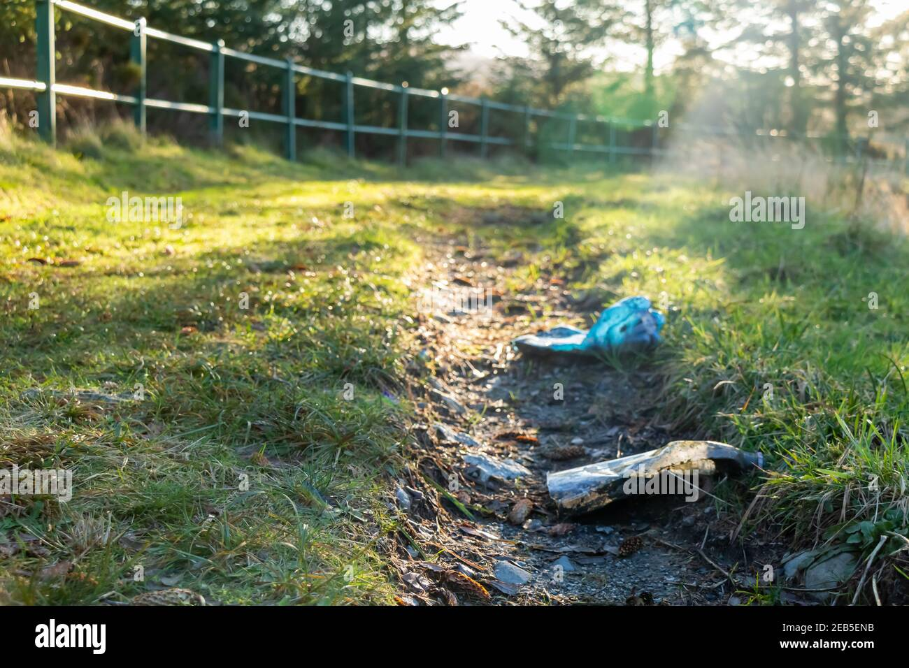 Plastic bottle litter left on a countryside path in the low winter sun Stock Photo