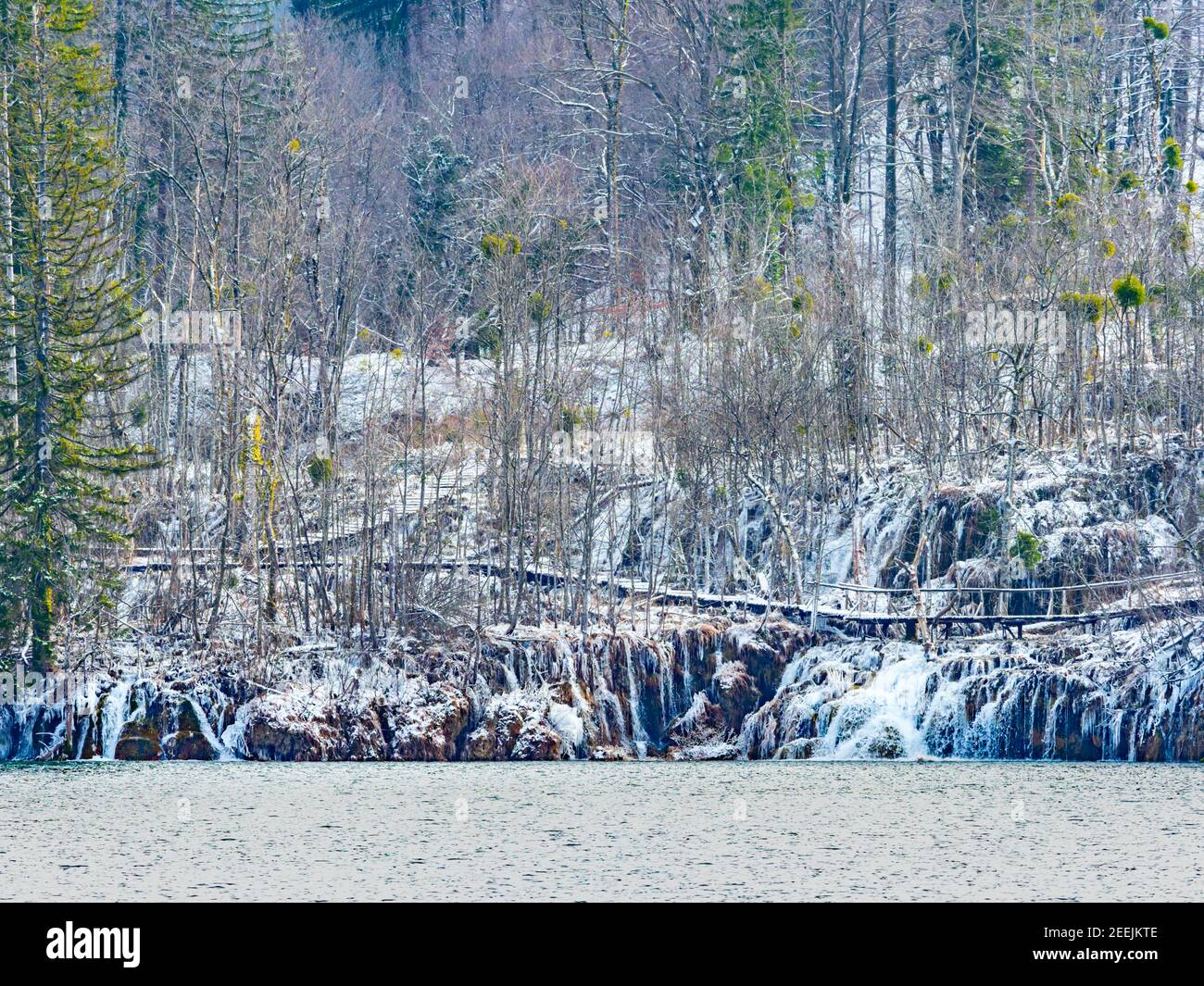Trees forest vegetation in national park Plitvice lakes Croatia Europe Winter under covered cover snow ice waterflow water flowing flow Stock Photo