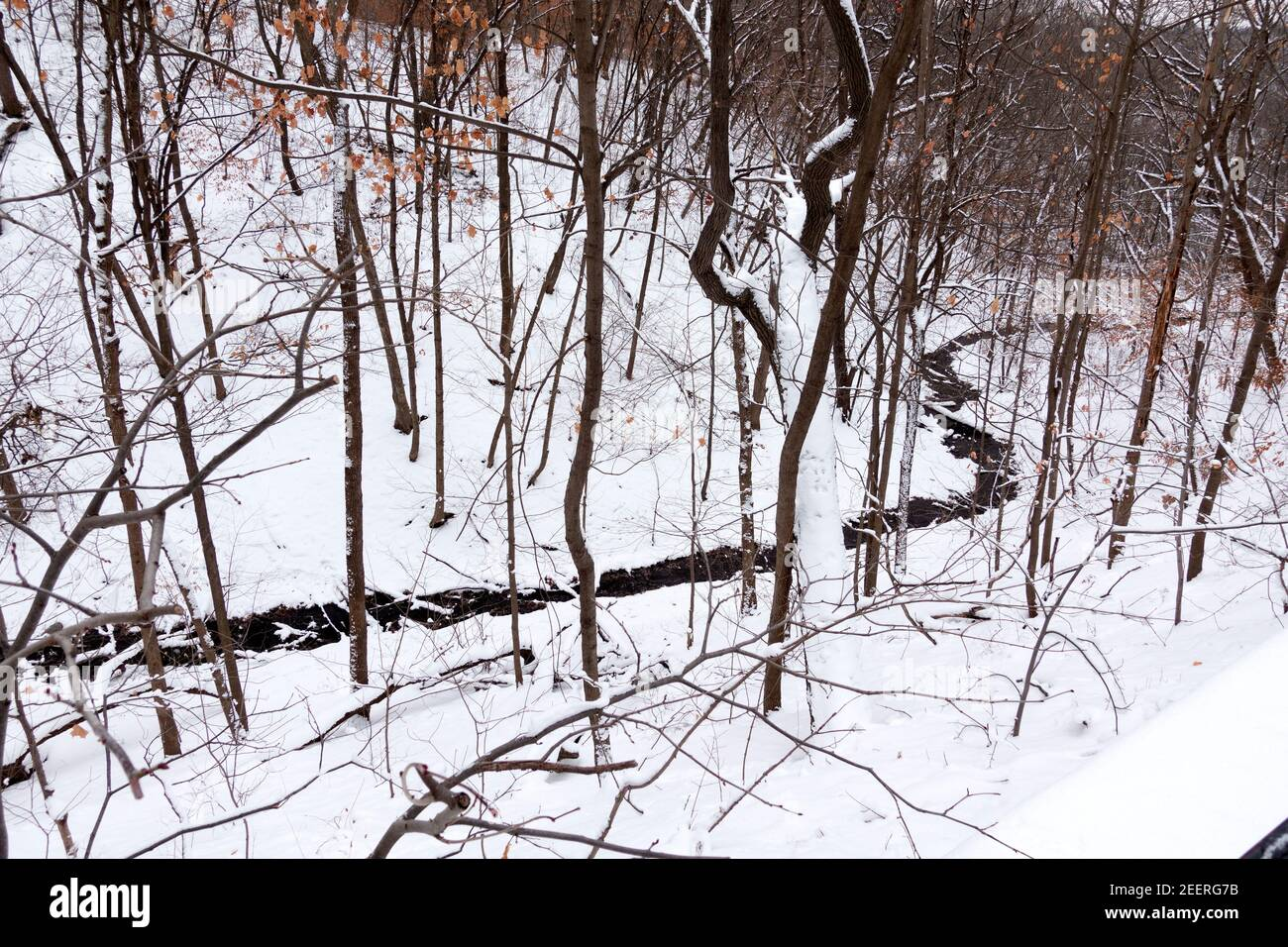 Shadow Falls Creek flowing in a curved route through the snow to the Mississippi River. St Paul Minnesota MN USA Stock Photo