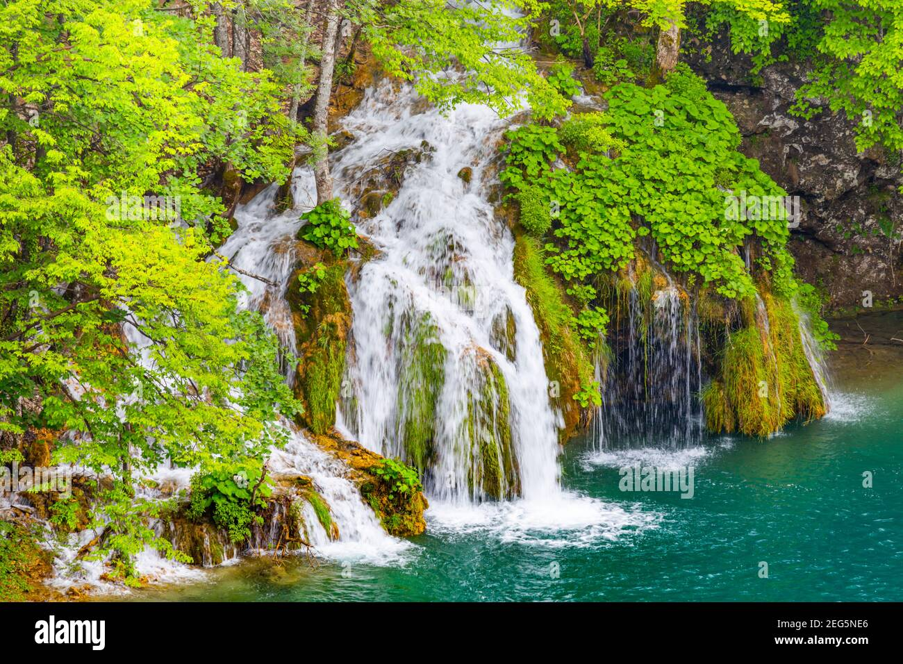Spring season Green forest in Plitvice lakes Croatia Europe waterflow water flowing flow Stock Photo