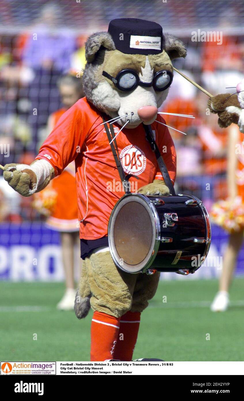 Bristol City Mascot High Resolution Stock Photography and Images - Alamy