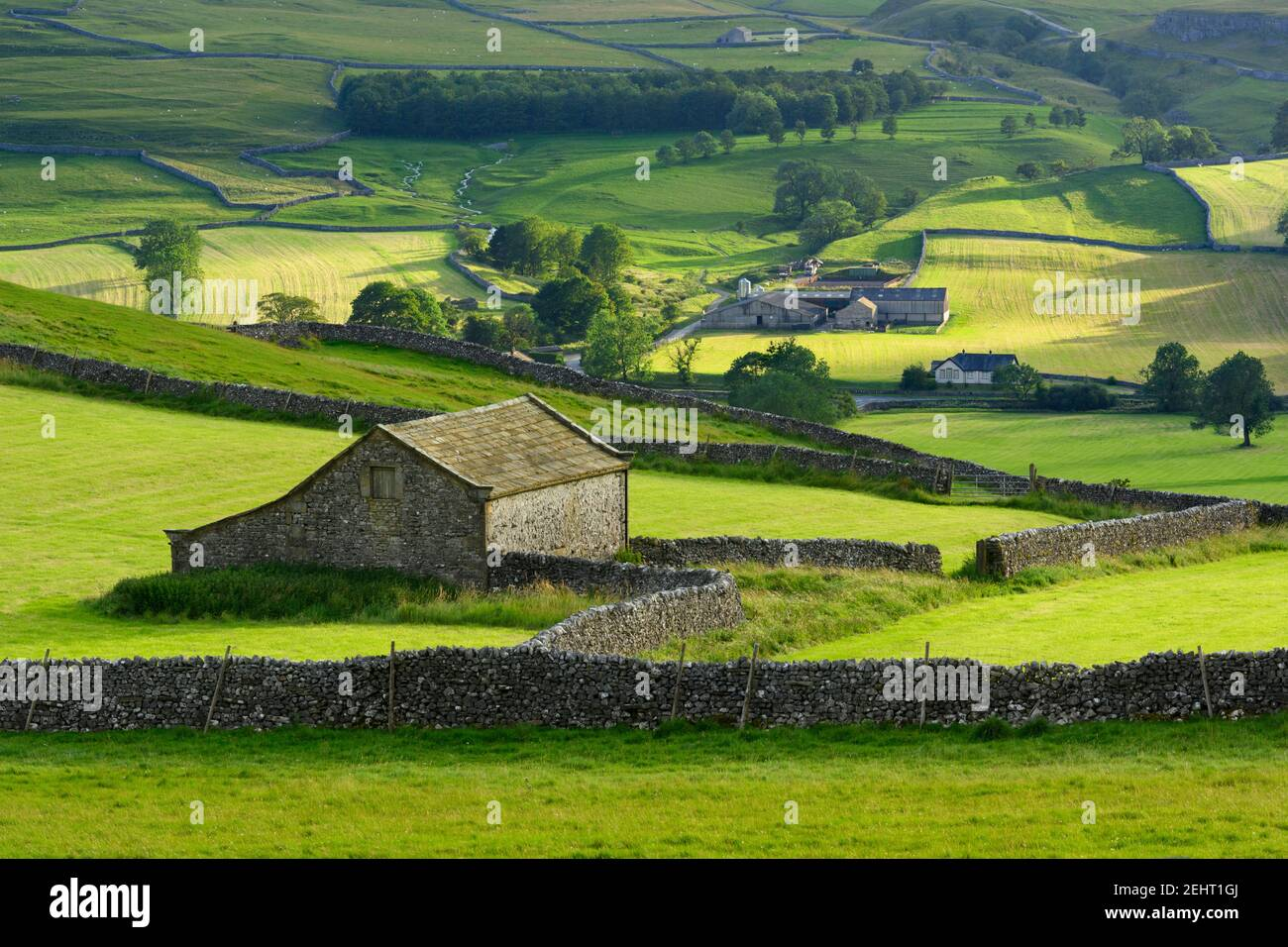 Scenic Wharfedale countryside (valley, hillsides, field barn, drystone walls, green farmland pastures, rolling hills) - Yorkshire Dales, England, UK. Stock Photo