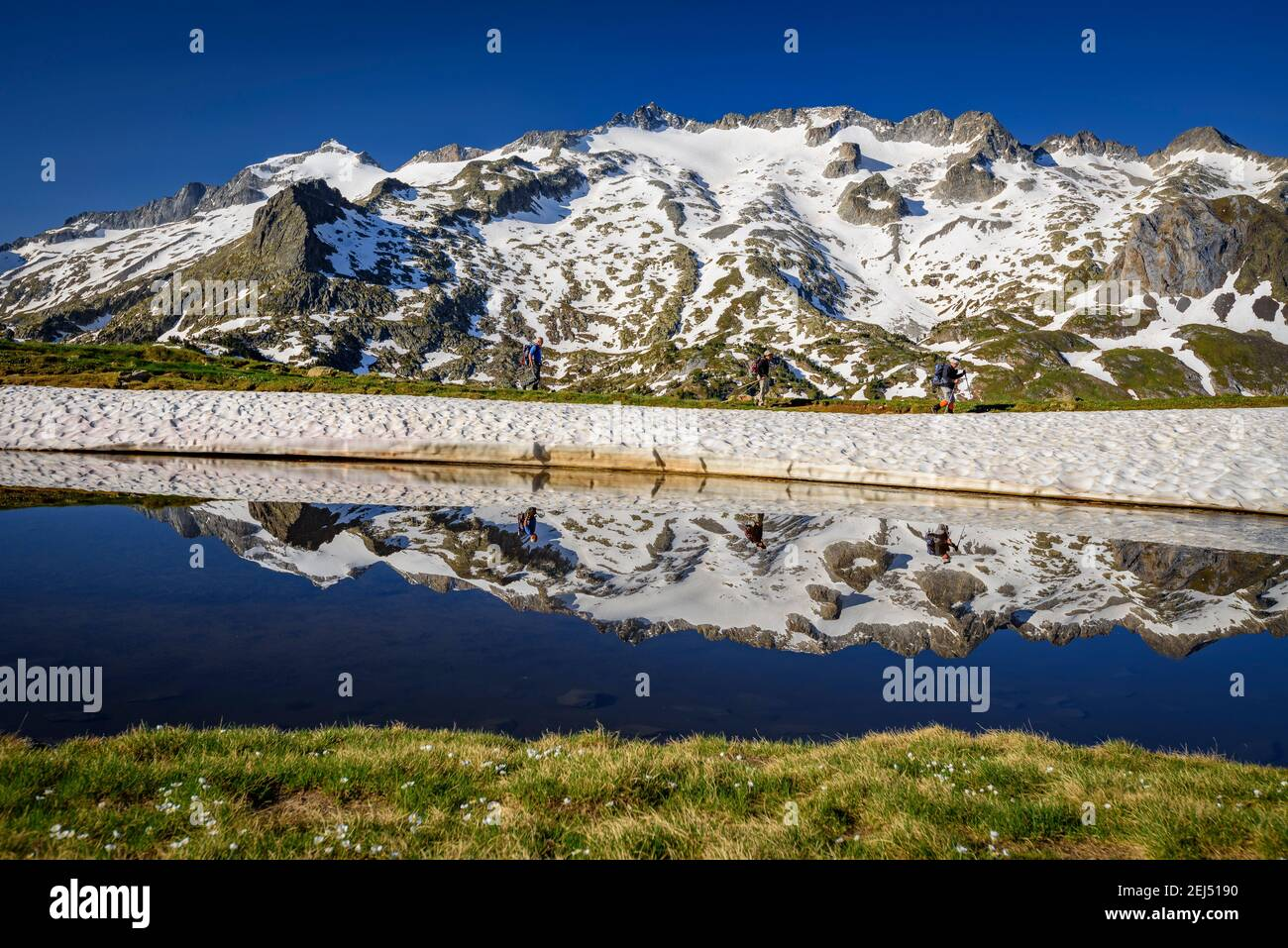 ENG: Maladeta Massif and the Aneto summit, the hightest peak in the Pyrenees, in a summer sunrise, seen from the path to the port of Benasque. (Benasq Stock Photo