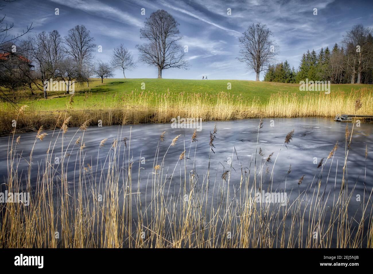 DE - BAVARIA: Frozen pond (vereister Weiher) at Buchberg near Bad Toelz  (HDR-PHotography) Stock Photo