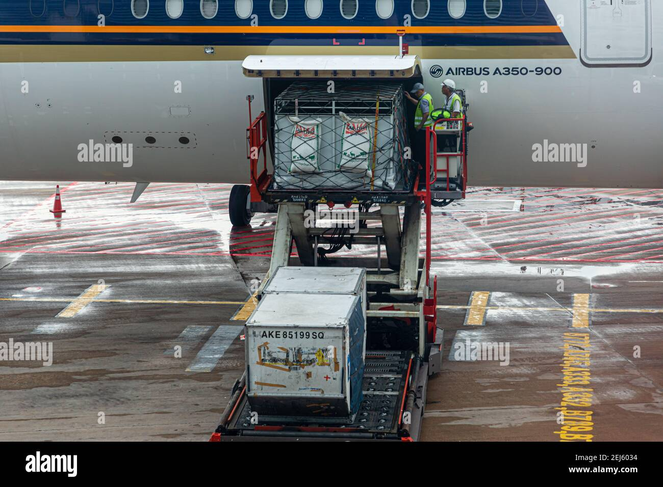 A ULD loader lifting a unit load device (ULD) with living Zebras to an aircraft's cargo bay of a Singapore Airlines machine at Changi Intern. Airport Stock Photo
