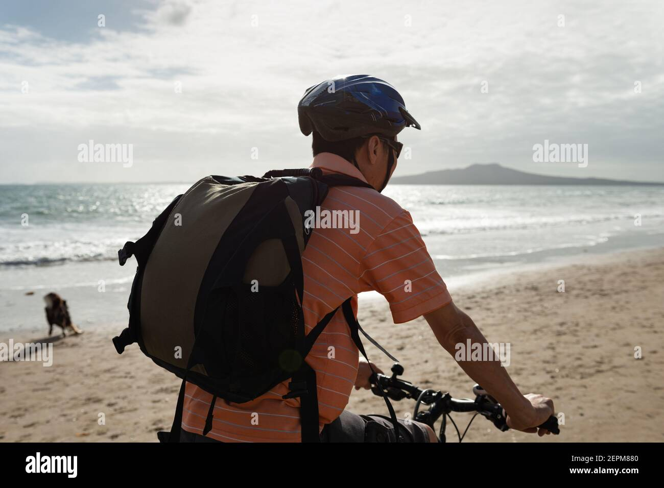 A cyclist riding along Milford beach with Rangitoto Island in the background and a dog playing on the beach Stock Photo