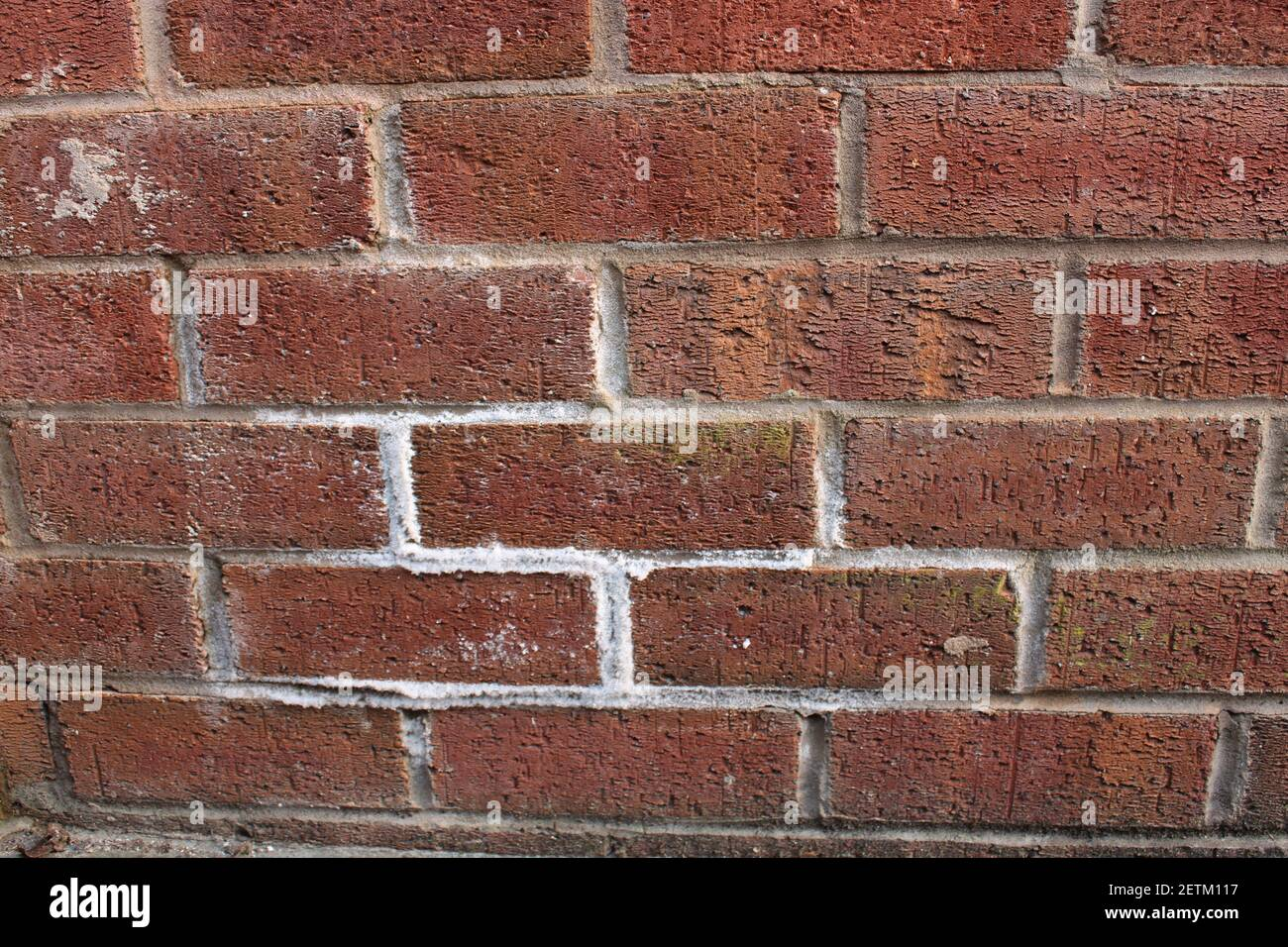 Efflorescence Wall High Resolution Stock Photography And Images Alamy