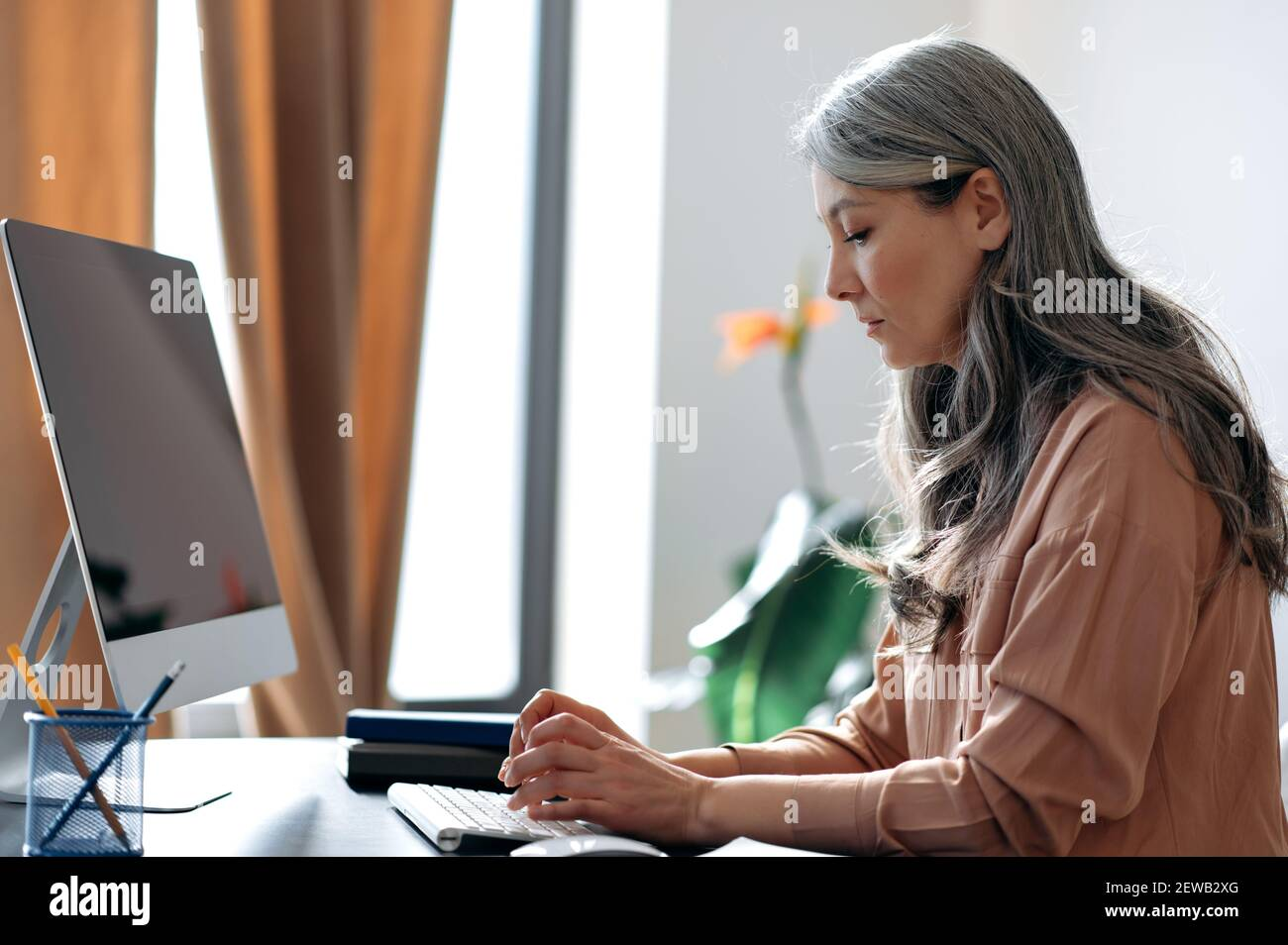 Focused gray-haired mature asian female employee, manager, ceo, working on computer, browsing internet, searching ideas, answers email, sitting at the work desk Stock Photo