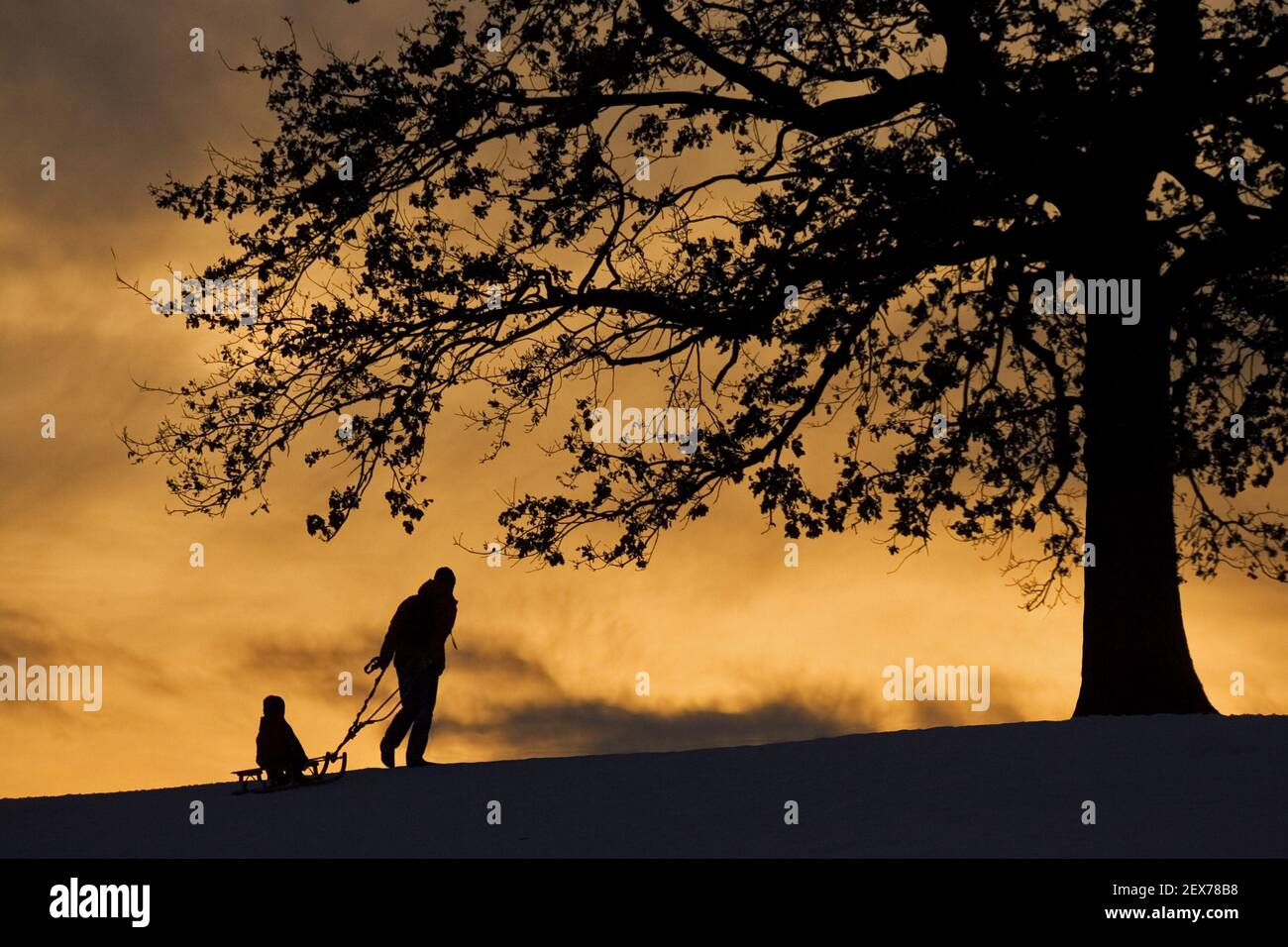 Atmospheric sunset with toboggan drivers in bavaria in winter, colourful sunset in bavaria with toboggan and people, germany, wi Stock Photo