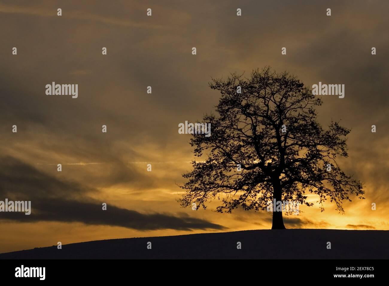 Atmospheric sunset in winter in bavaria, colourful sunset in bavaria, germany, winter Stock Photo