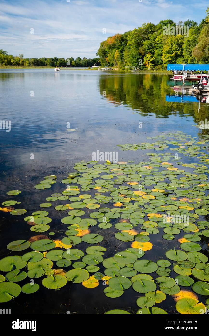 A beautiful, late summer morning on McCann Lake, near Chetek, Wisconsin, USA. Stock Photo