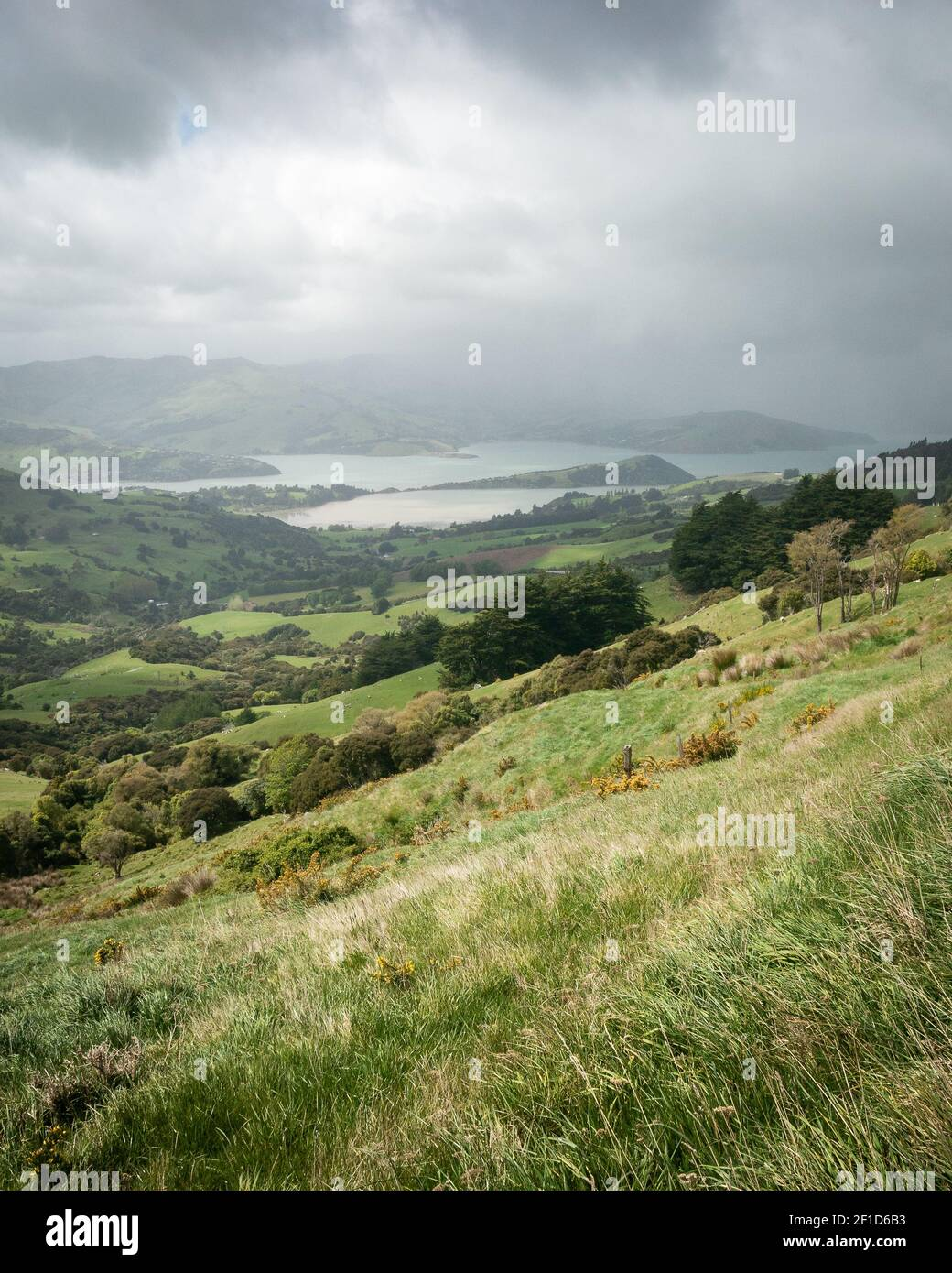 Storm approaching a valley with green rolling hills, portrait shot made on Banks Peninsula near Christchurch, New Zealand Stock Photo