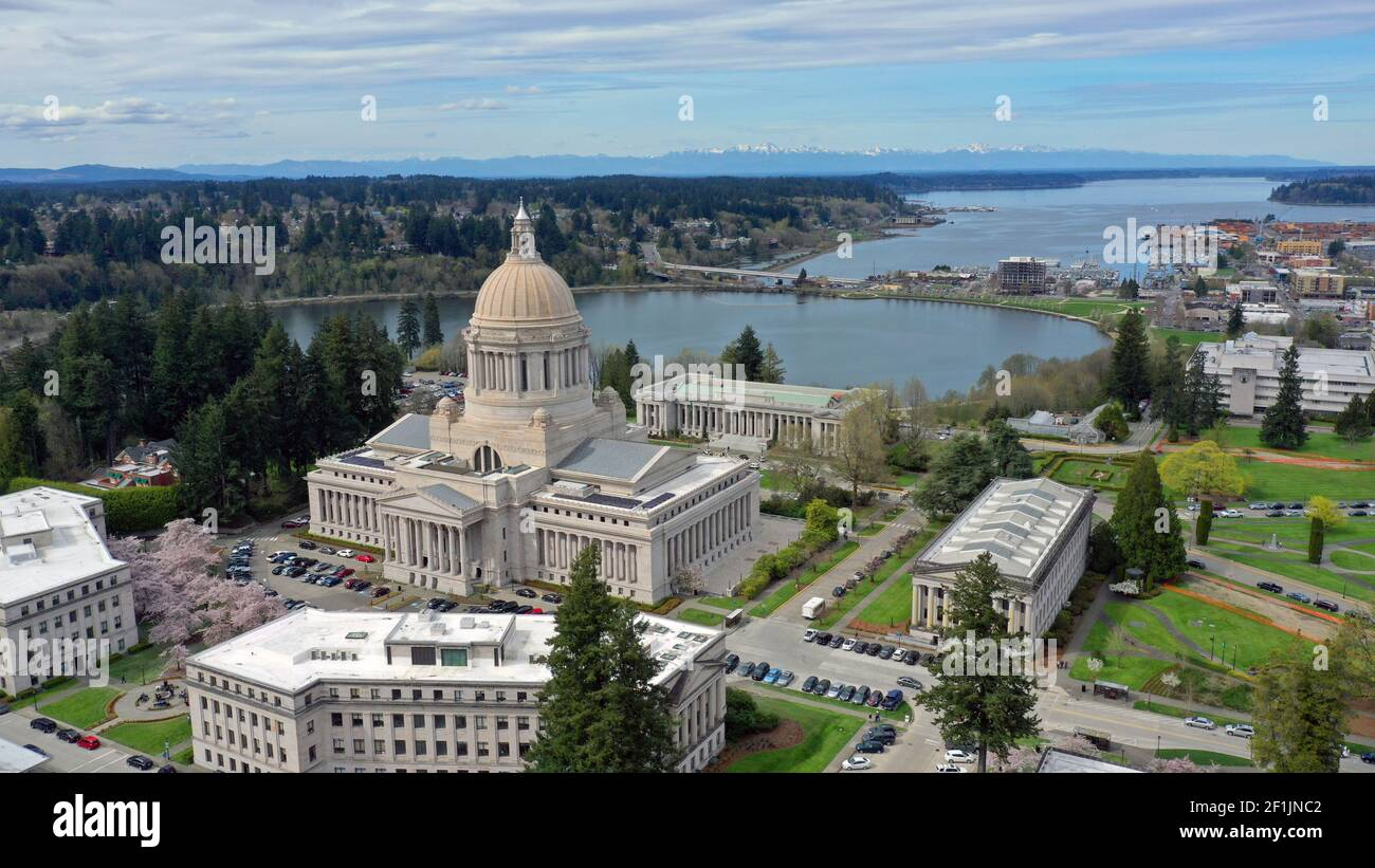 Spring Cherry Blossoms at the State Capital Building in Olympia Washington Stock Photo