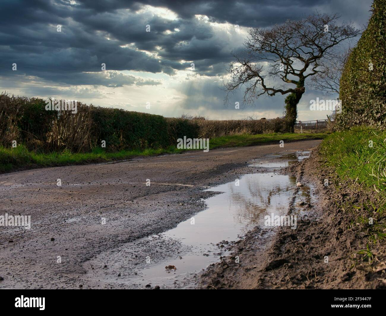 Standing water in pot holes on a damaged section of country lane in the north-west UK in winter. Stock Photo