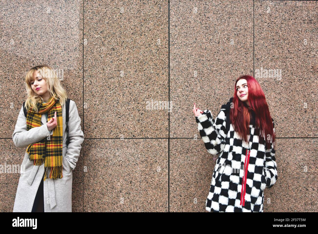 Two young women are cursing. Quarrel, aggression, stress. Two brunette girlfriends swear. Scream. Point fingers to the head. An emotional solution to Stock Photo