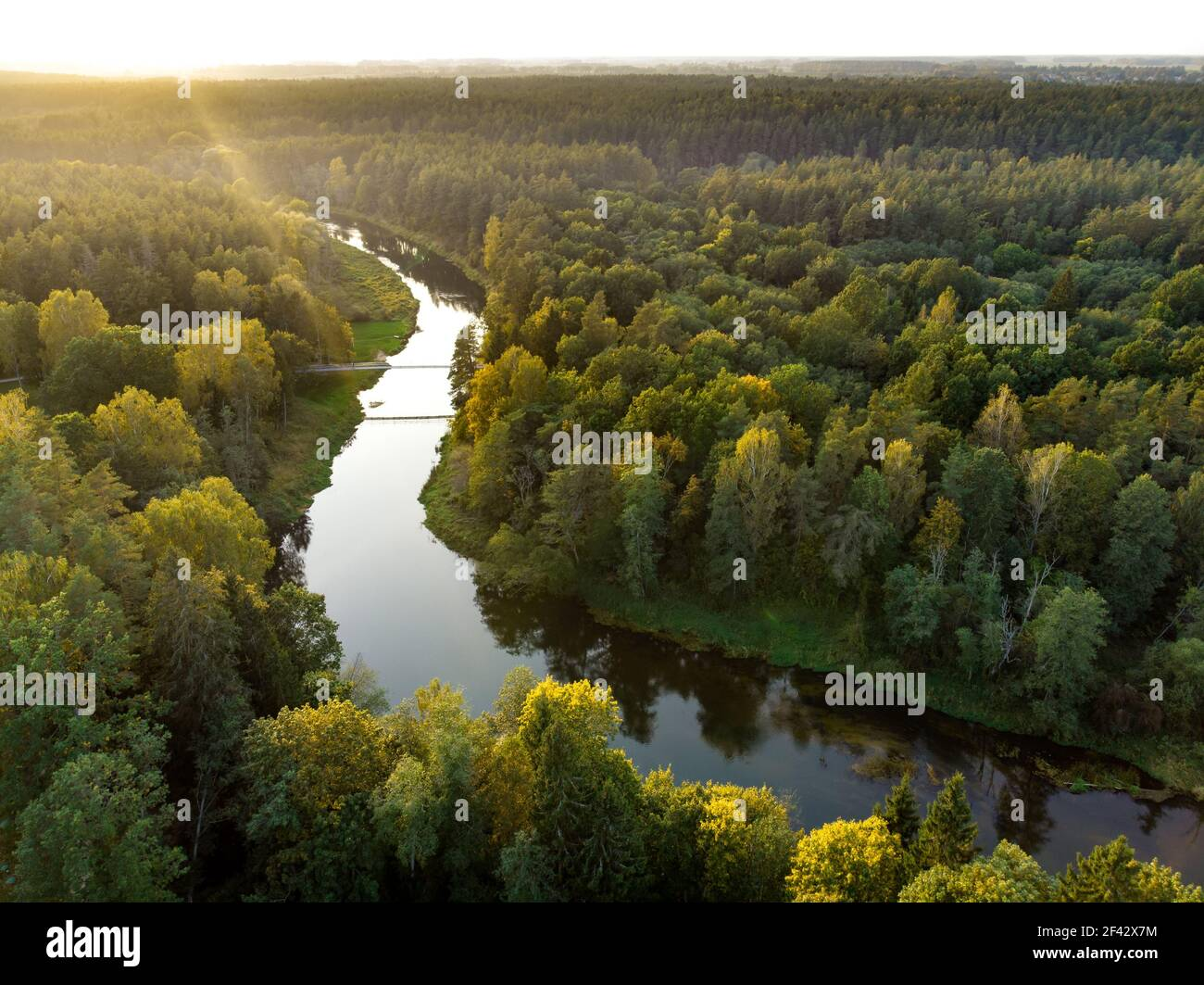 Aerial view of Laju takas, tree-canopy trail complex with a walkway, an information center and observation tower, located in Anyksciai, Lithuania Stock Photo