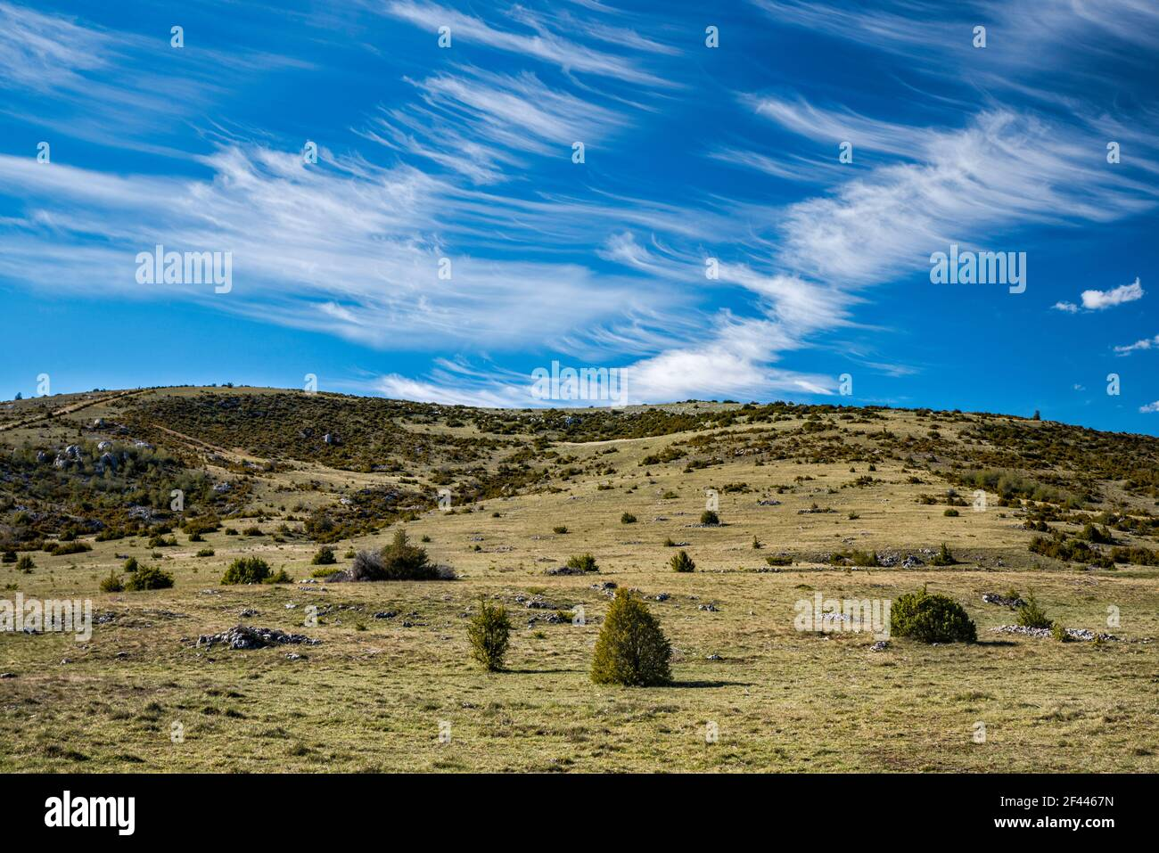 High arid causses landscape, cirrus clouds, view from road D16, at Causse Mejean plateau, Massif Central, Lozere department, Occitanie region, France Stock Photo