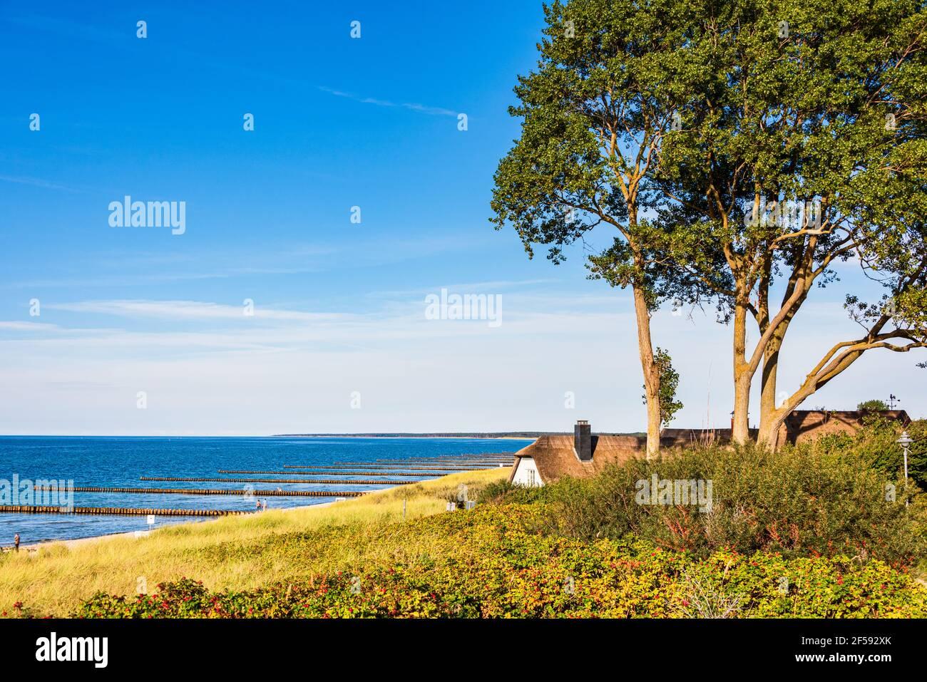 Buhnen an der Ostseeküste sorgen für Küstenschutz und feine Sandstrände Stock Photo