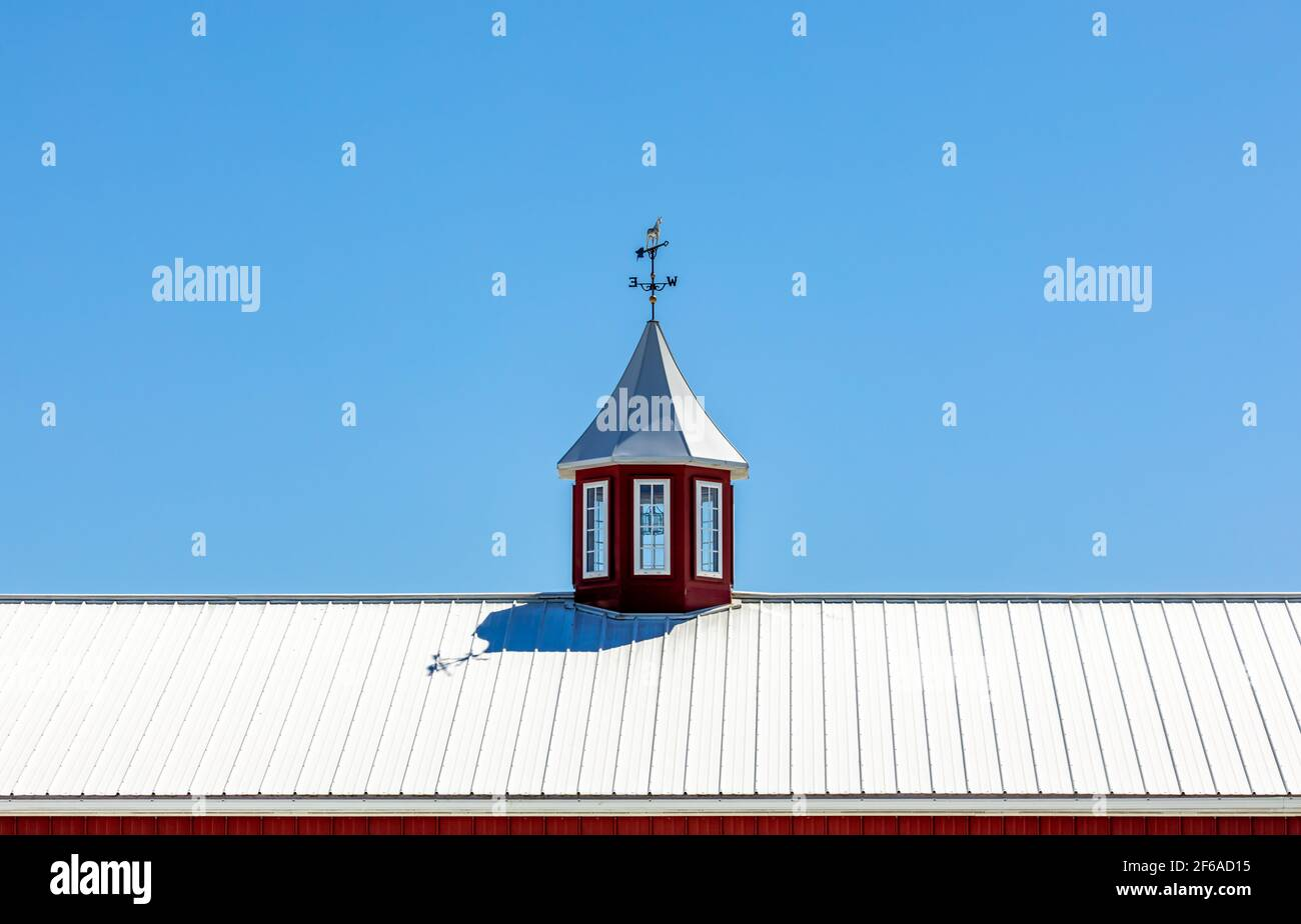 Detail of a metal roof, cupola and weather vane Stock Photo
