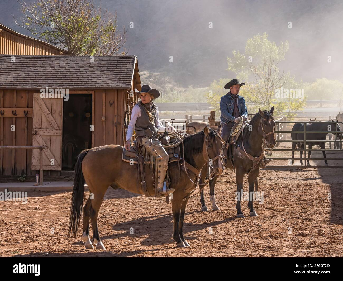 A young attractive working cowgirl wrangler and a cowboy on their horses on a ranch near Moab, Utah. Stock Photo