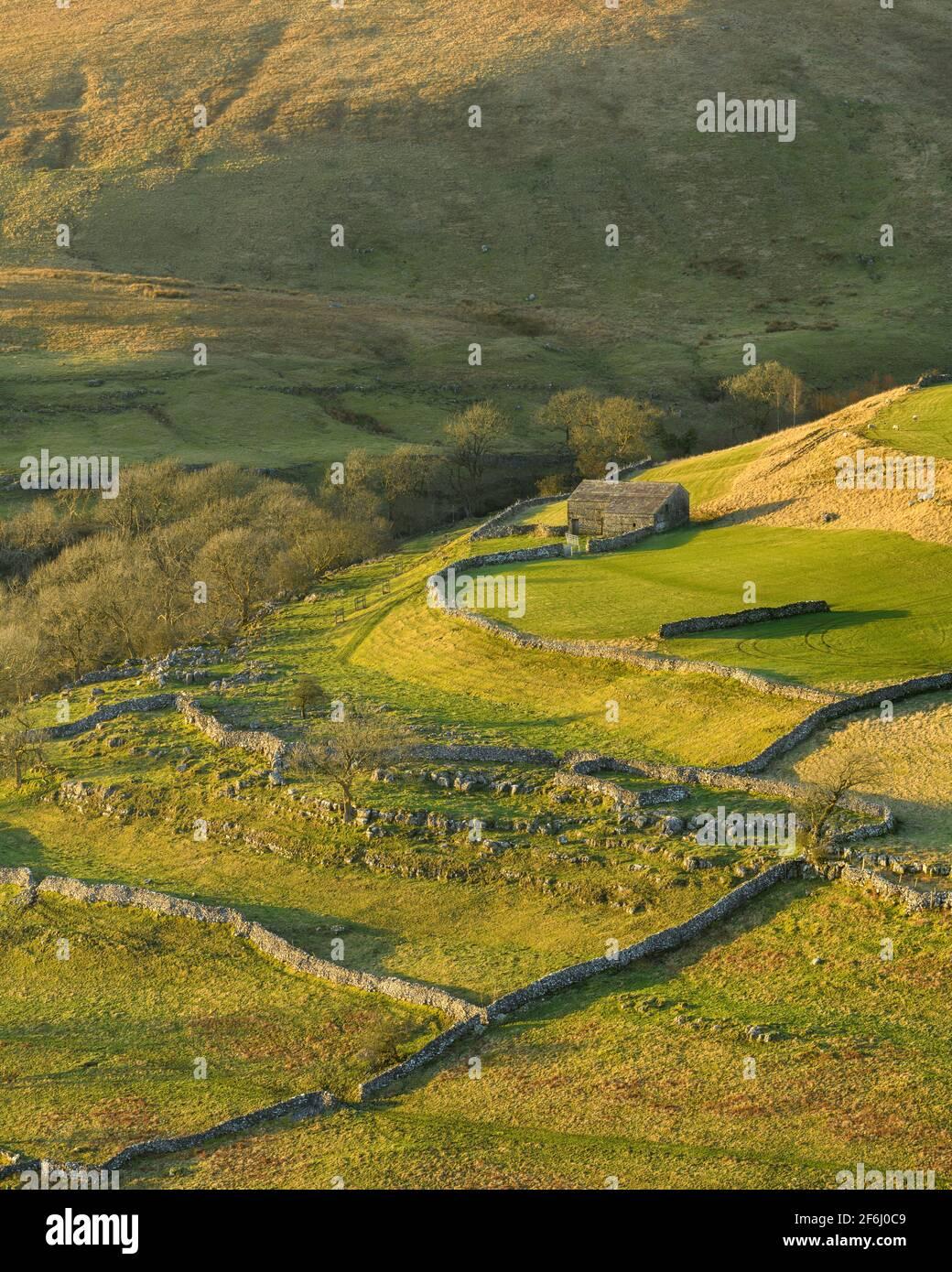 Scenic sunny Wharfedale landscape (upland fells, stone barn, steep hillside slopes, limestone walls, grazing pastures) - Yorkshire Dales, England UK. Stock Photo