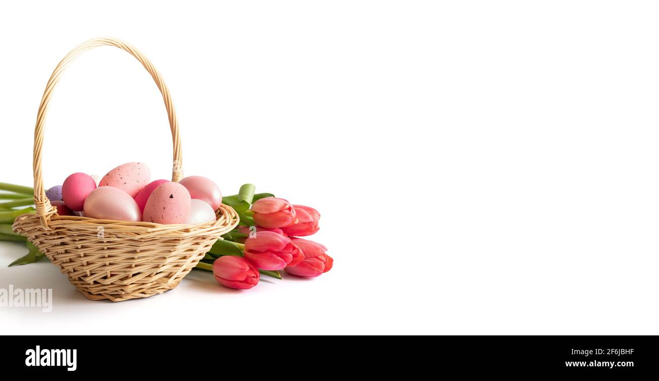 Easter pink eggs in a basket and a bouquet of pink red tulips isolated on a white background. Easter composition. Banner. Space for text. Stock Photo