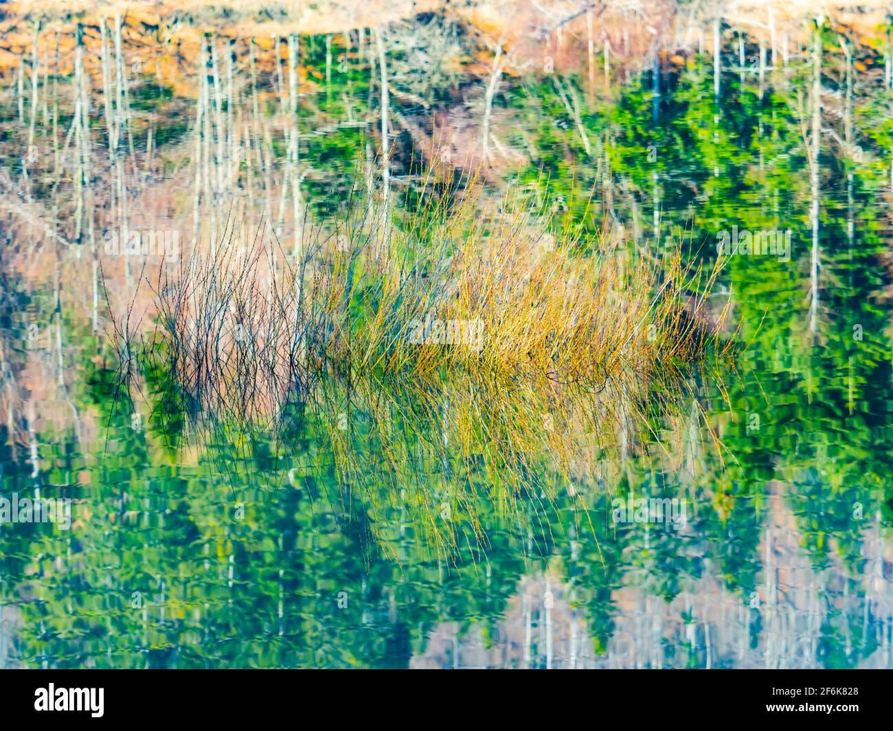 Picturesque peaceful tranquility zen Lokve lake in Croatia Europe Stock Photo