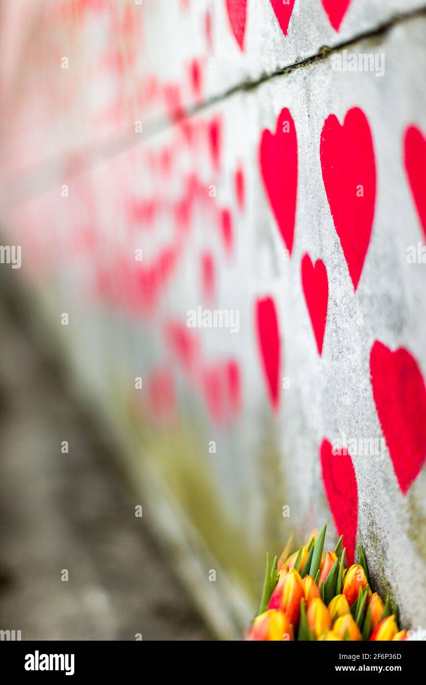 The National Covid Memorial Wall on the South Bank in London. Stock Photo