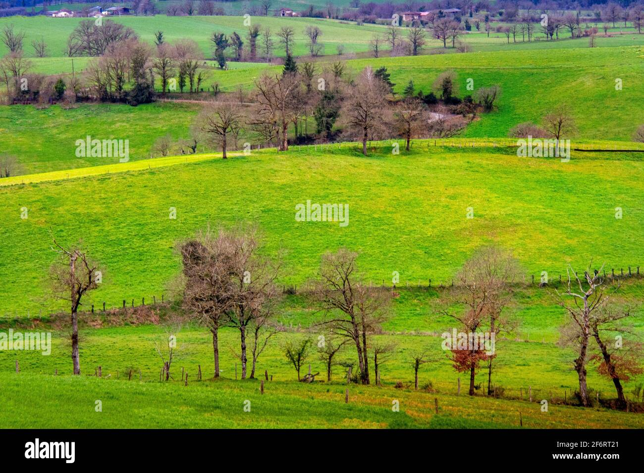 France, Centre, Auvergne,  Winter landscape at near Saint Constant, in the Cantal. Stock Photo