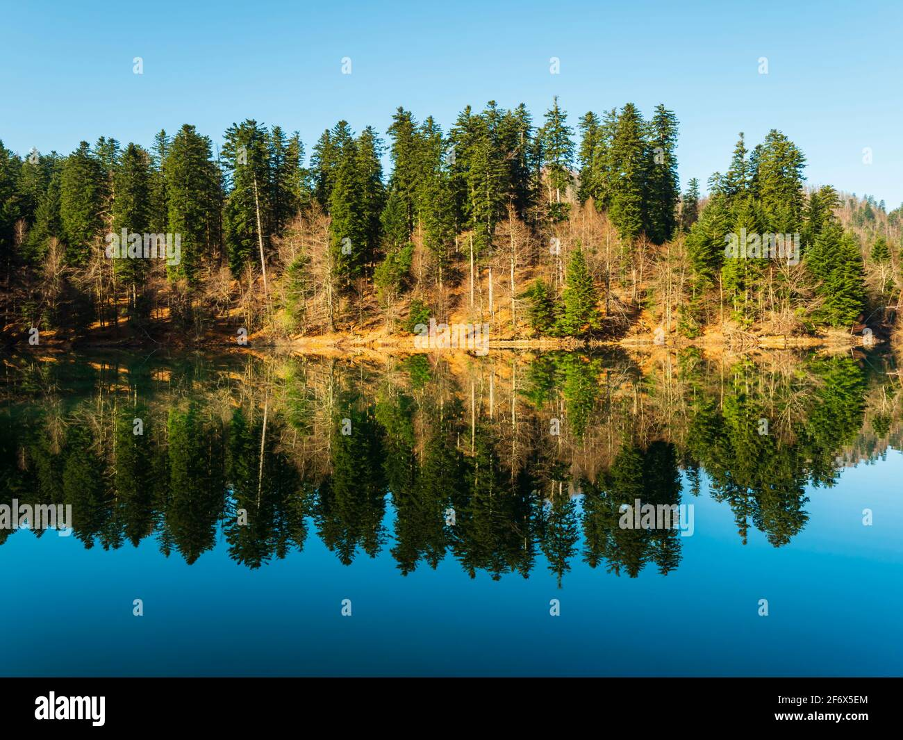 Zen on Lokve lake in Croatia Europe Stock Photo