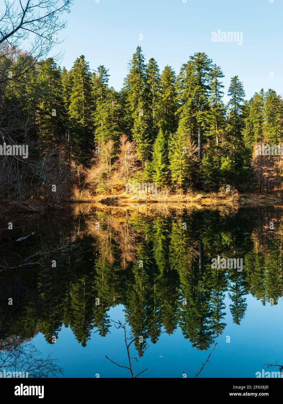 Zen on Lokve lake in Croatia Europe Stock Photo