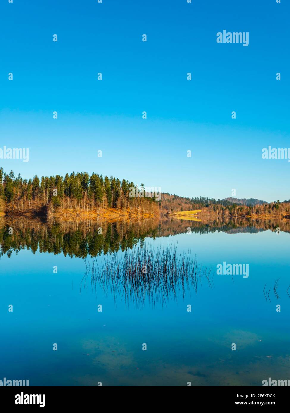 Zen feeling in Lokve lake in Croatia Europe Stock Photo