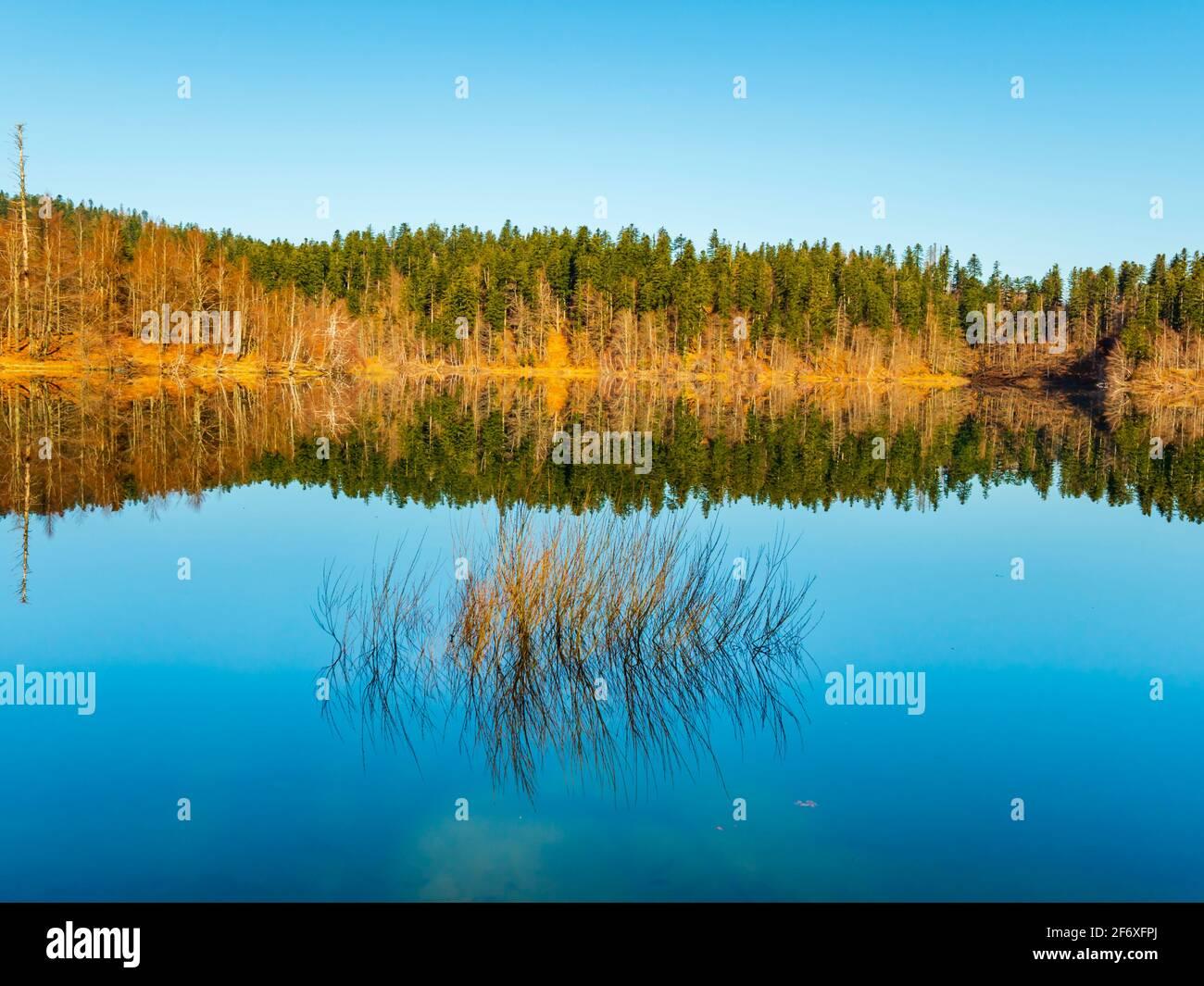 Coastline coast zen feeling in Lokve lake in Croatia Europe Stock Photo