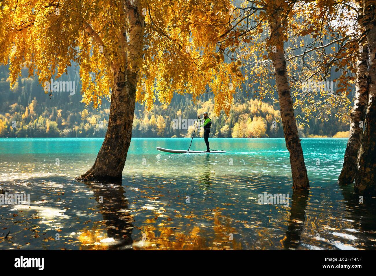 Man floating on a SUP board at mountain lake near yellow forest in autumn time. Adventure at Stand up paddle boarding. Stock Photo