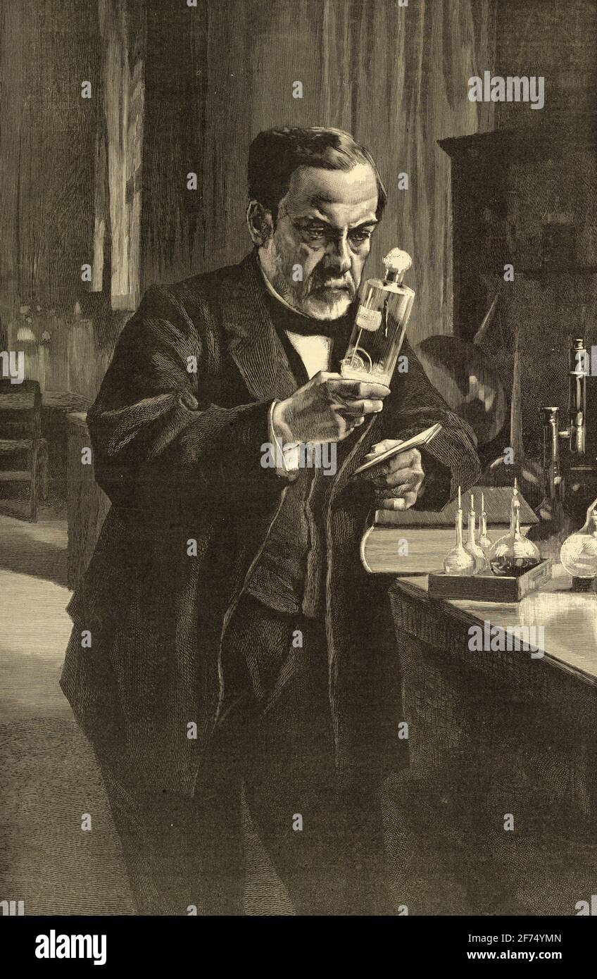 Monsieur Louis Pasteur in his Laboratory 1885  - by Edelfelt Albert - 1854-190 ( reproduction of the best-known portrait of Pasteur by Finnish ) Stock Photo