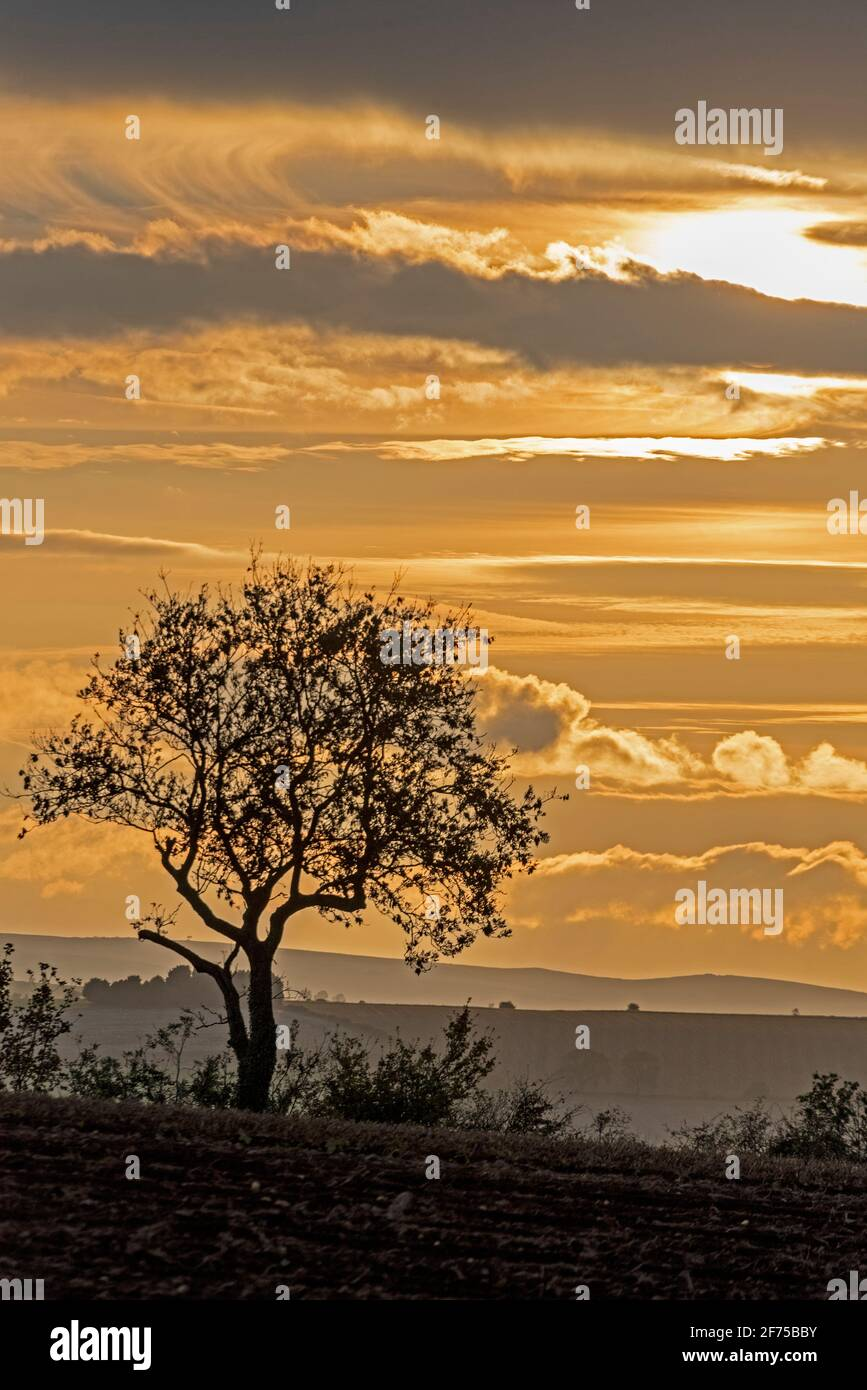 Late Autumn sunset over the Cotswolds,   one of the thirty-four allocated Areas of Outstanding Natural Beauty (AONBs) in England and Wales. Stock Photo