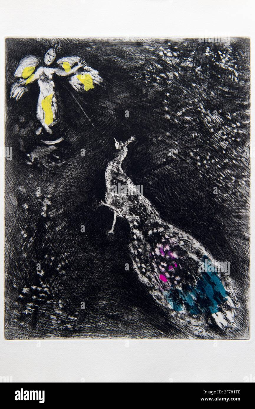 France, Aisne, Château-Thierry, Jean de La Fontaine Museum - city of Chateau-Thierry, illustrations from La Fontaine's Fables, The Peacock Complaining to Juno fable XVII from Book II, prints by Marc Chagall, 1927-1930 (copper engraving), published by Tériade in 1952, etching on wove paper, heightened with gouache and watercolor Stock Photo