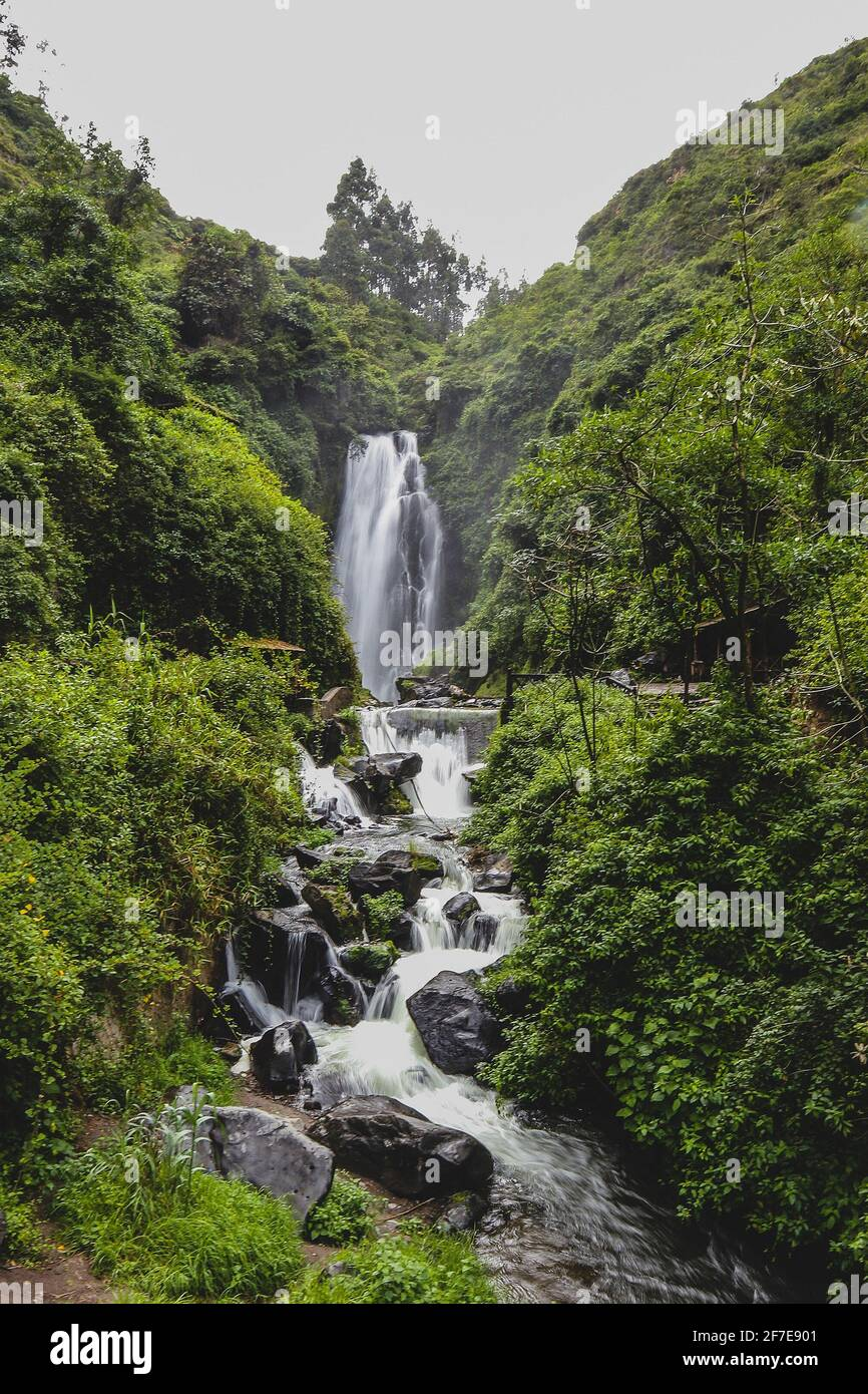 A small waterfall in a lush green environmnent in Ecuador. Stock Photo