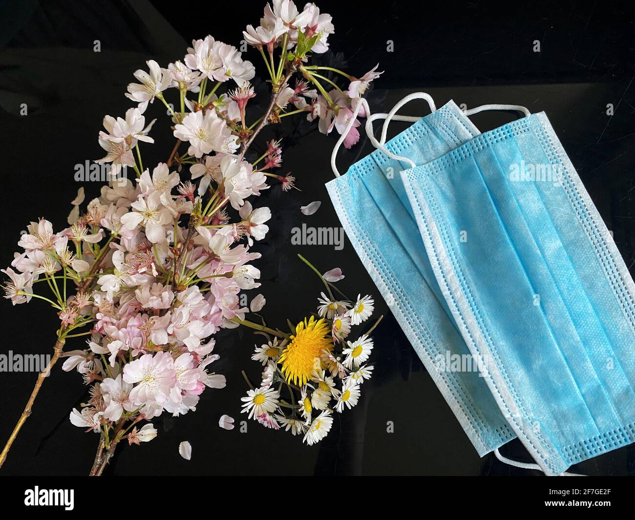 Flowers on the side of surgical masks - Covid19 coronavirus concept - Condolence, Grievance, Hope and Solidarity to all the lives lost. Stock Photo