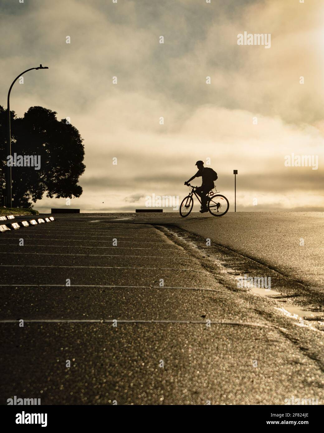 Silhouette image of a cyclist riding on the road at Milford beach, Auckland. Vertical format. Stock Photo