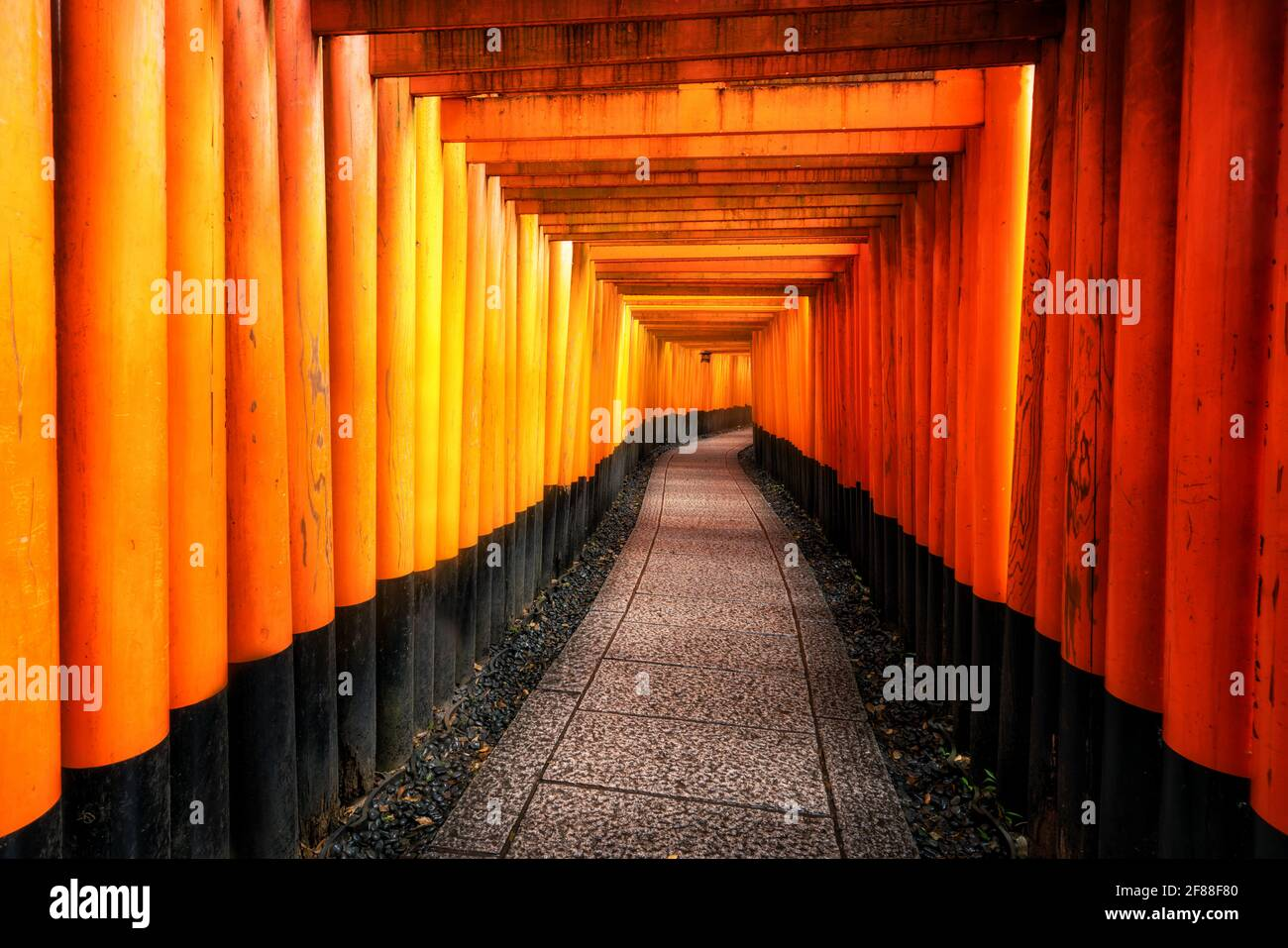 Red Torii gates in Fushimi Inari Shrine in Kyoto, Japan. It is the famous landmark and tourist travel destination of Kyoto. Stock Photo