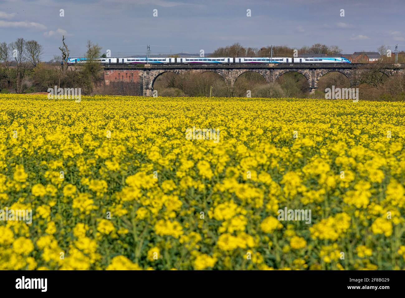 A train crossing the Sankey viaduct at Earlestown over the Sankey Valley. Trans Pennine express train.  heading west towards Newcastle. Stock Photo