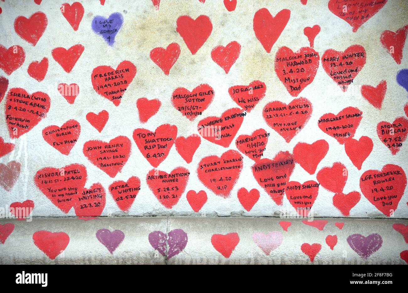 London, England, UK. National Covid Memorial Wall along the Thames Embankment, opposite the Houses of Parliament, c150,000 hearts commemorating the li Stock Photo