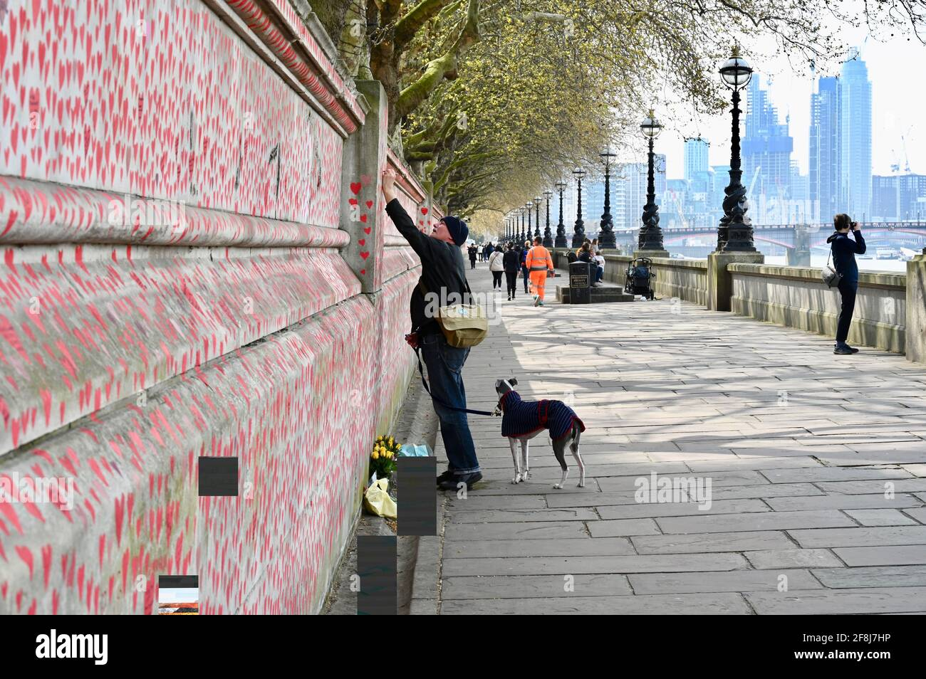 London. UK. 14th April 2021, The public continue to flock to the COVID memorial wall for the victims of the coronavirus who have passed away in the last year. St Thomas' Hospital, London Stock Photo