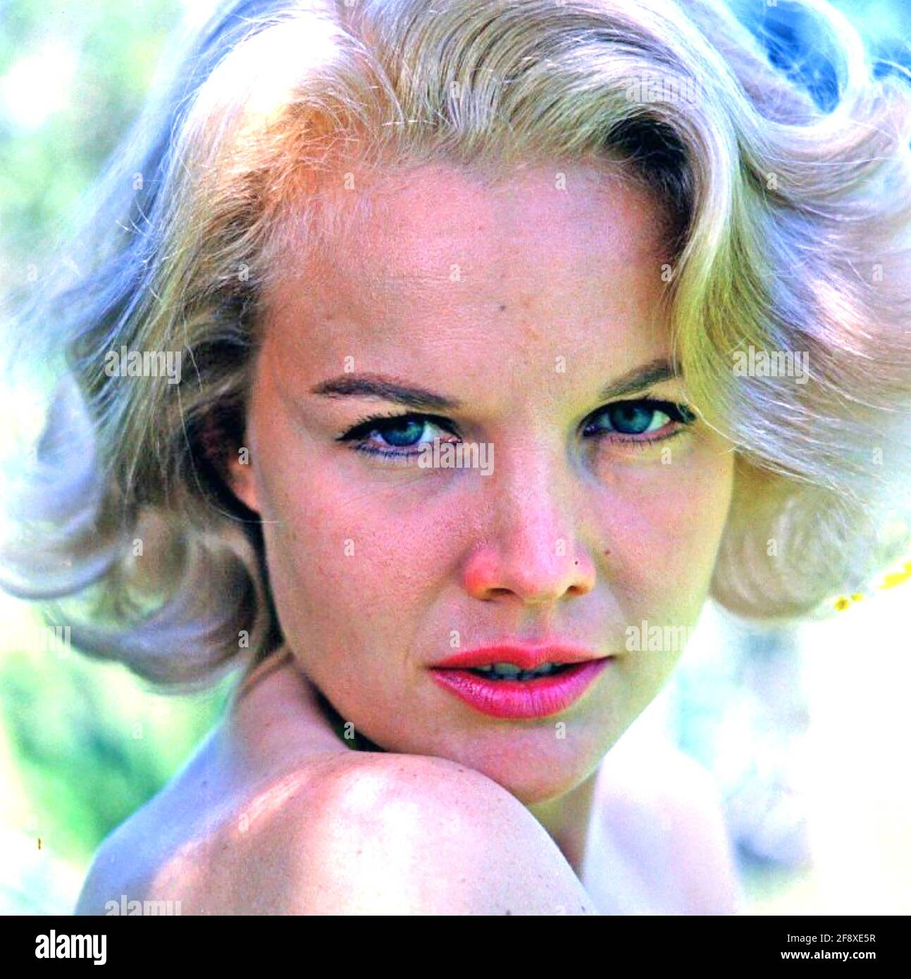 CARROLL BAKER American stage,film and TV actress about 1960 Stock Photo