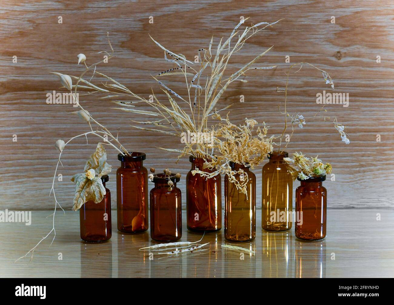 Alternative medicine. Ripe and dried parts of plants are straw colored. Herbs and seeds in brown glass bottles. Stock Photo