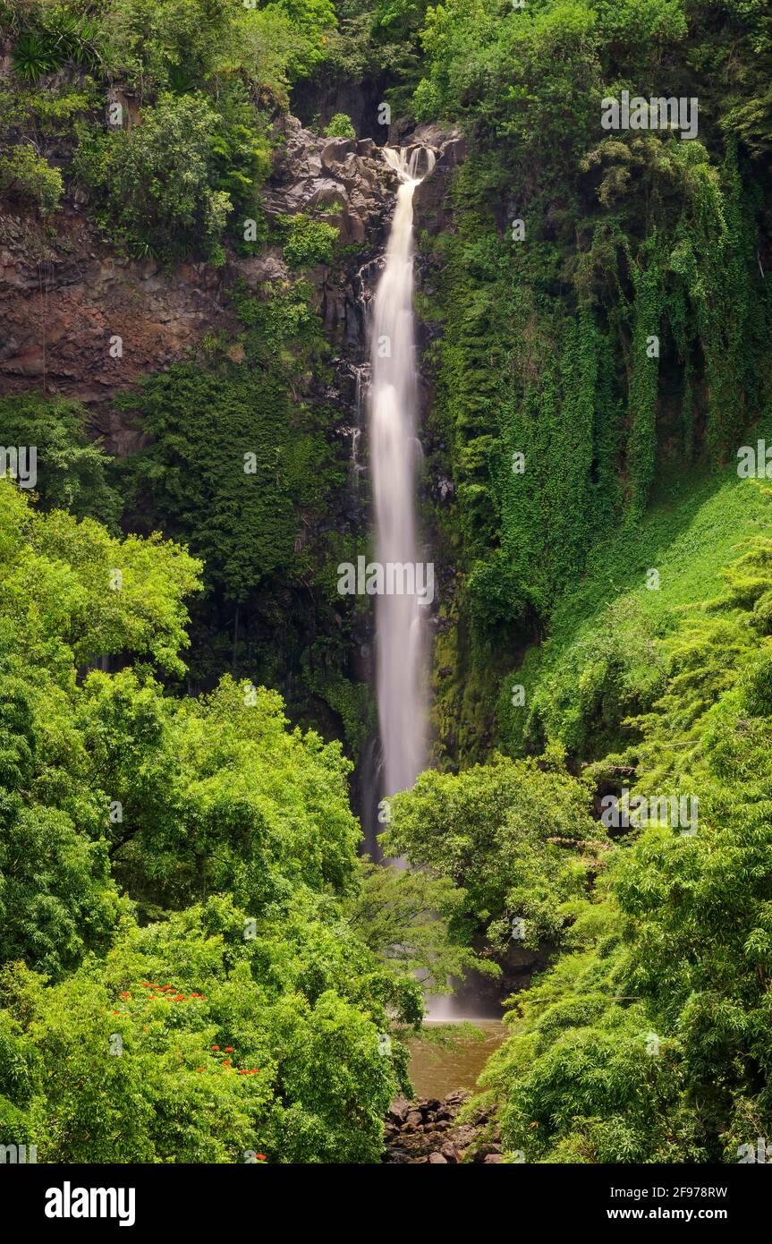Makahiku Falls cascades 185ft along Pipiwai Trail in the Kipahulu District of Haleakala National Park, Maui, Hawaii. Stock Photo