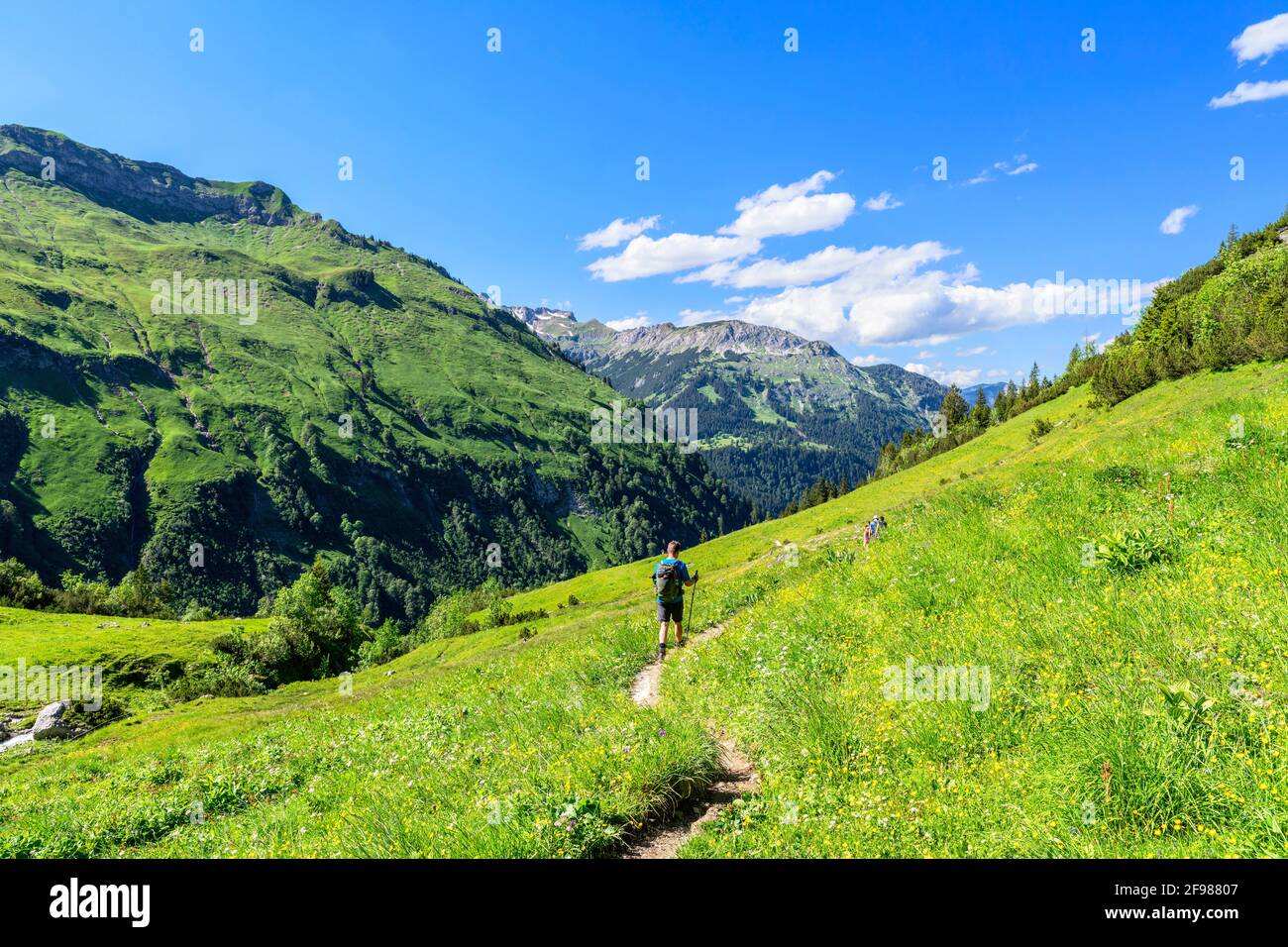 Hikers in alpine mountain landscape with green meadows and forest on a sunny summer day. Allgäu Alps, Bavaria, Germany Stock Photo