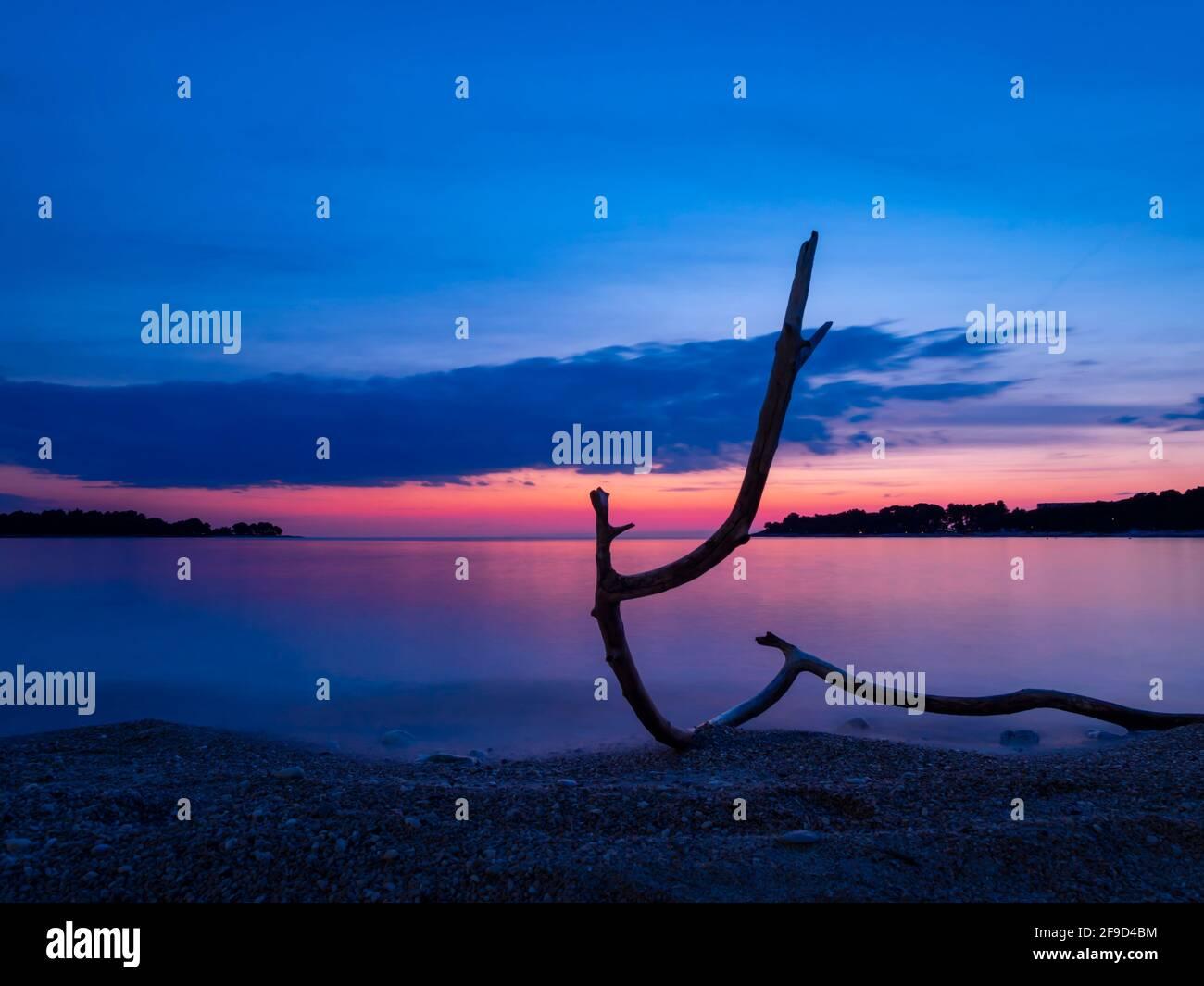 usk twilight  gorgeous stunning idyllic pretty beautiful seaside beach evening tranquility alluvion erected dried wooden wood tree trunk branch Stock Photo