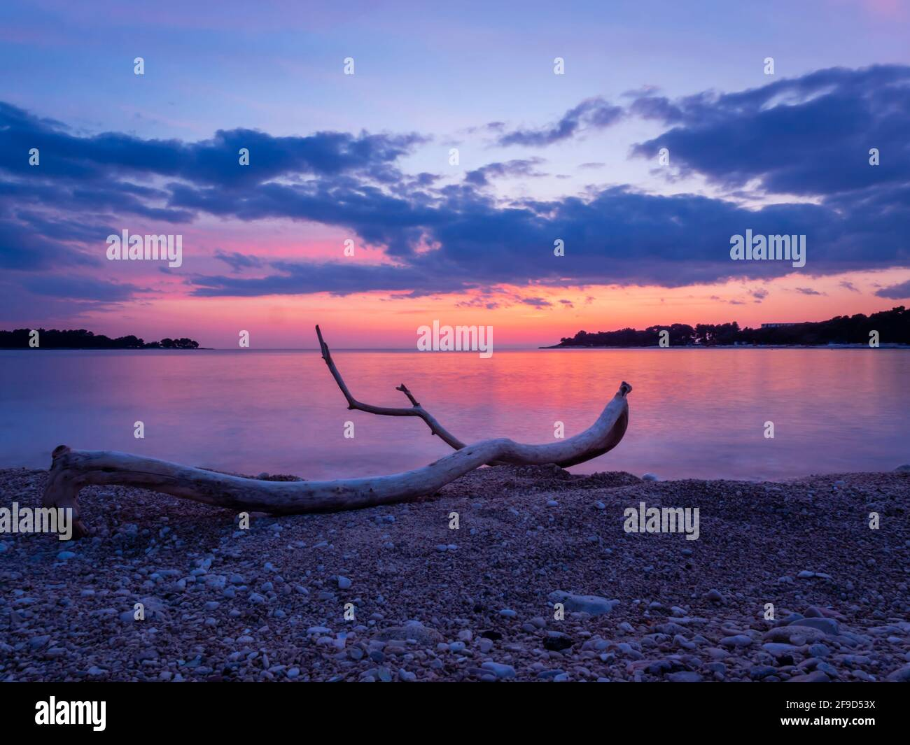 Dusk twilight gorgeous stunning idyllic pretty beautiful seaside beach evening tranquility wooden wood alluvion dried tree trunk branch Stock Photo